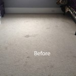 Bedroom-Wall-to-Wall-Carpet-Cleaning-Dublin-A