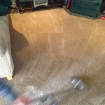 Dirty-Carpet-Cleaned-Dublin