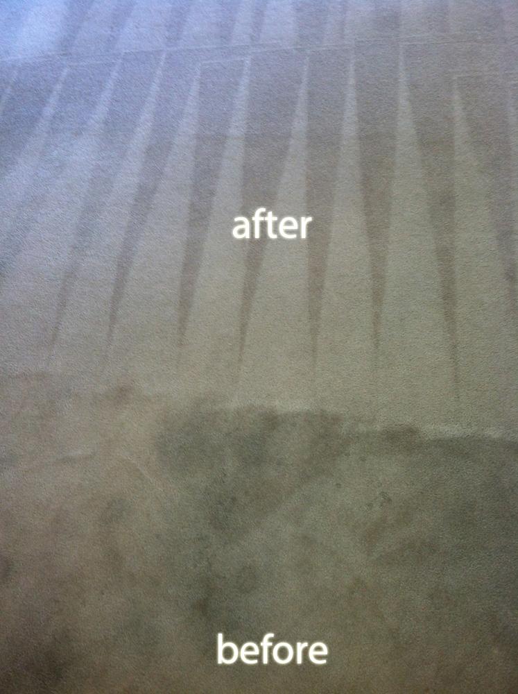 Carpet Cleaner Al Dublin Ca Carpet Vidalondon