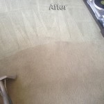 Dublin-Carpet-Cleaning-Company