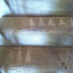 Dublin-Stairs-Carpet-Cleaning