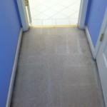 Dublin-Vomit-after-carpet