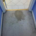 Dublin-Vomit-before-carpet