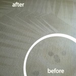 Dublin-Wine-Stain-Carpet-Cleaning